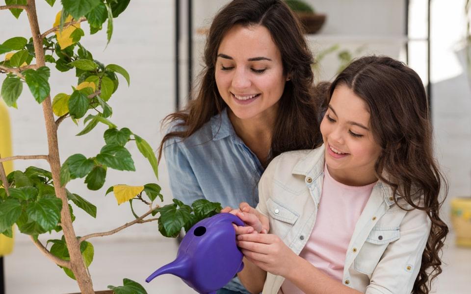 ¿Te gustan las plantas? Tips para cuidarlas y tenerlas en tu apartamento